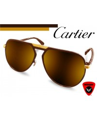 CARTIER Blast Aviator Sunglass 2