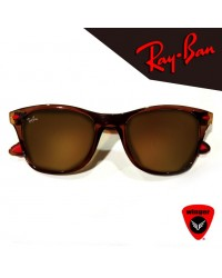 Ray-Ban Next Gen Wayfarer 2 (Brown)