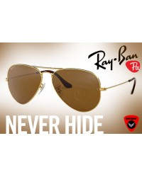 Ray-Ban-Desert Polarized Aviator J1